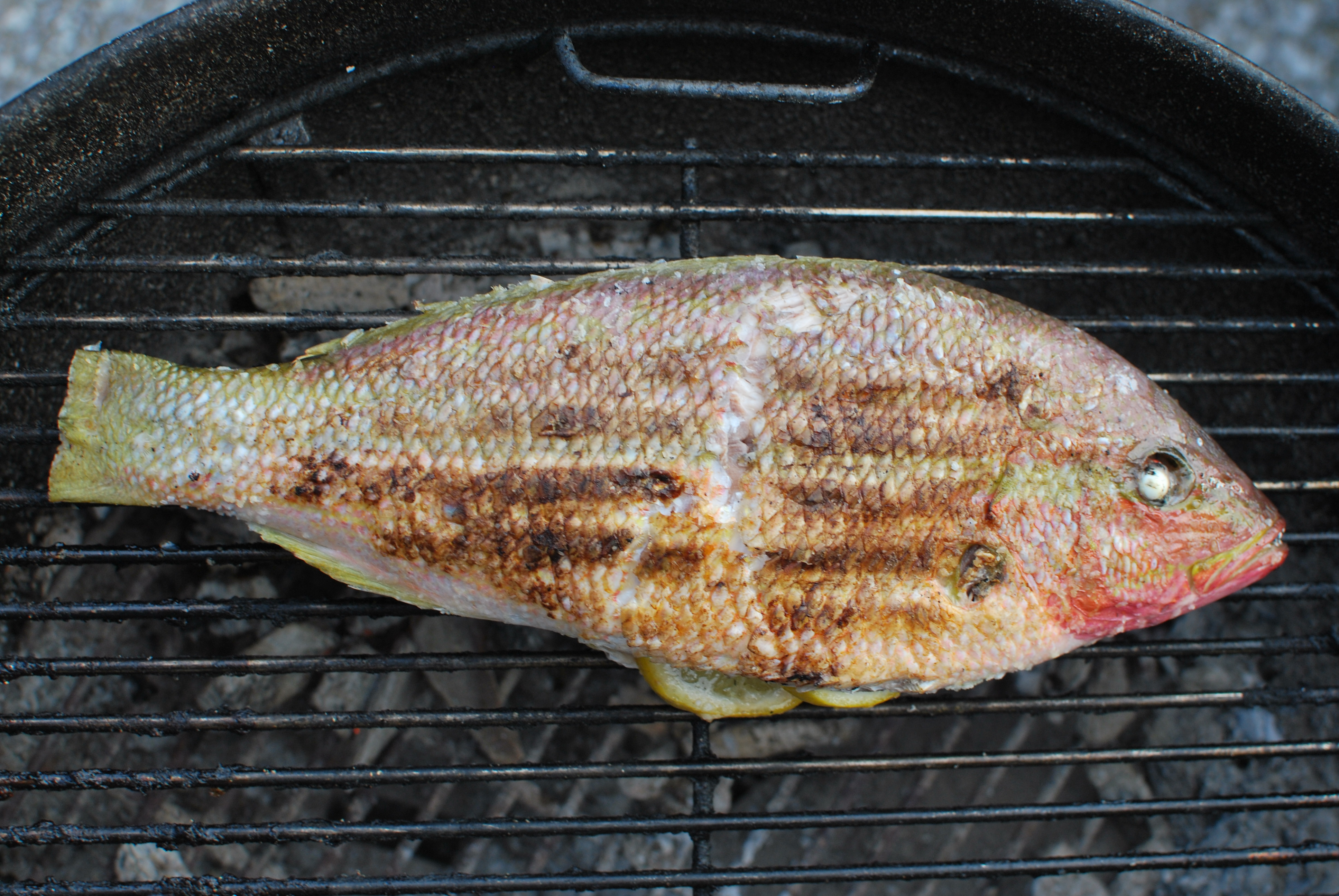 grilled fish grilled whole best grilled fish recipes and grilled fish ...